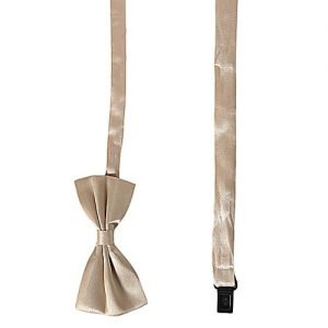 Daraz Fashion Golden Men's Bow Tie - Da-11 MA 676